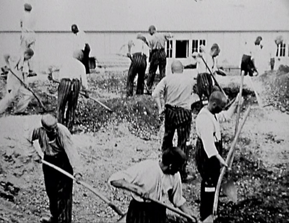 prisoners working at camp 1